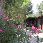 bungalow villaggio puglia