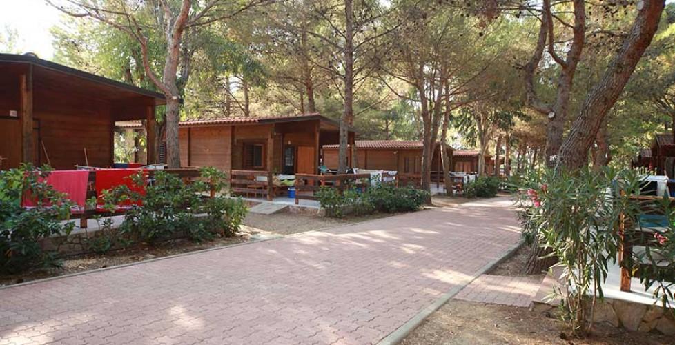 LAST MINUTE formula Residence in  BUNGALOW ESTATE 2018 in Puglia nel Gargano a Rodi Garganico